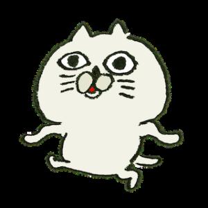 むかつく猫